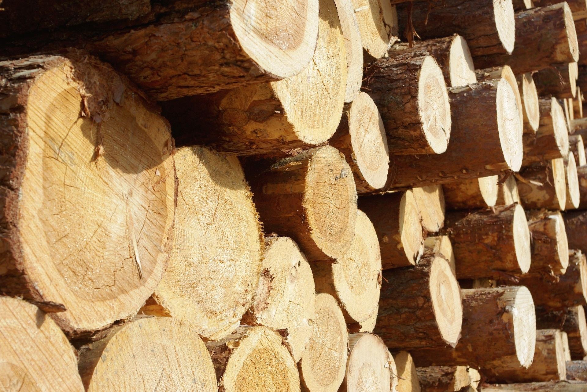 Консолидация в деревообработке